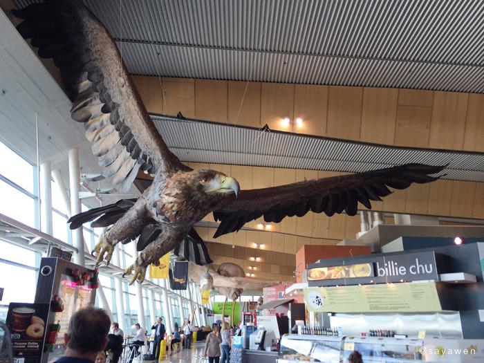 写真:グワイヒアのあとを追うもう一羽の大鷲