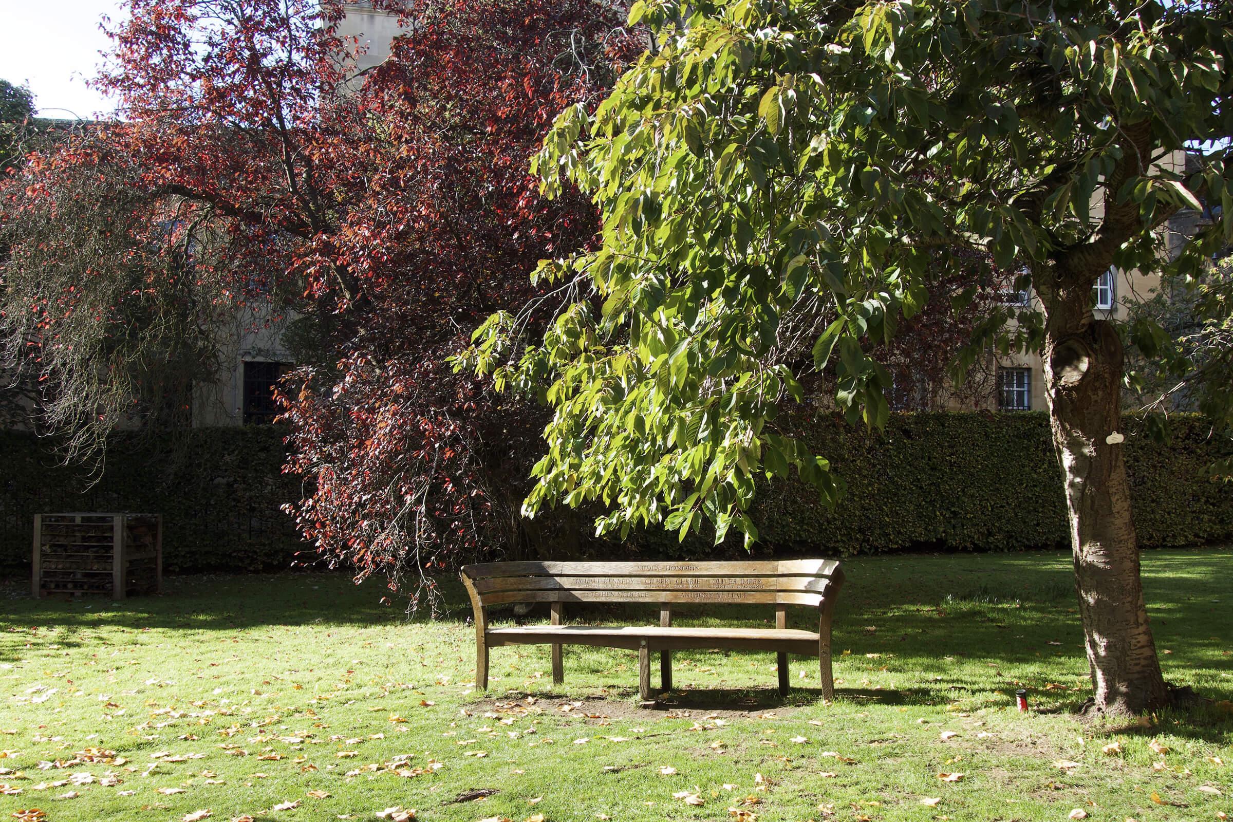 マートン学寮内のベンチ